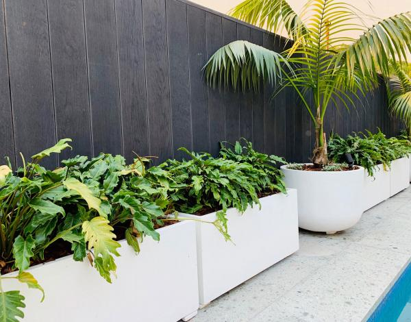 StoneLite-trough-81019-in-situ-custom-spray-white-planter